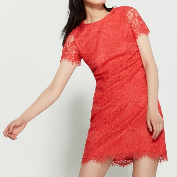 Kensie Dresses & Skirts - KENSIE  Lace Mini Dress Coral 14
